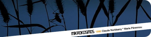 mikrokosmos